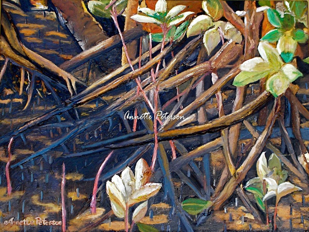 Mangrove Bouquet, 2008