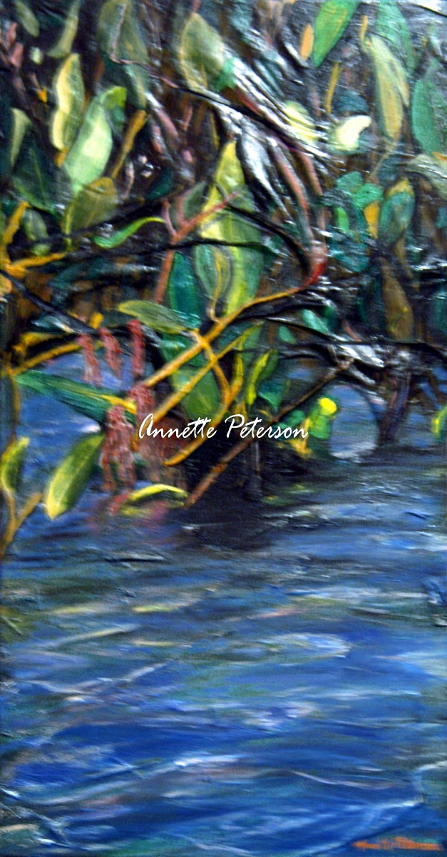 Mangrove Delight,  2008